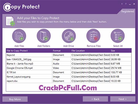 Copy Protect 2.0.5 Crack